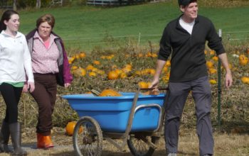 Picking Pumpkins on a Fall Day